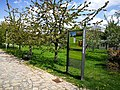 Krkonošské centrum environmentálního vzdělávání 10.jpg