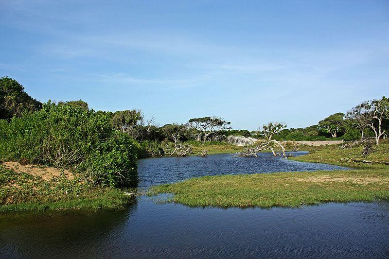 Kumana National Park (Okanda).JPG