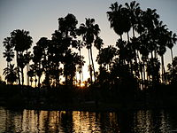 Echo Park as seen with Palm Trees