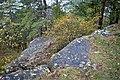 LSG Sudmerberg - Kreide-Sandstein (15).jpg