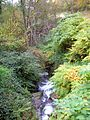 La Combe-de-Lancey abc13 ruisseau Pont du martinet.JPG