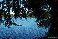 Lac du Bouchet - 2002 - P0001945.JPG