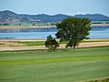 Laguna de Gallocanta en primavera.jpg