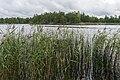Lake Gisslaren, hiking trail Upplandsleden, Sweden 11.jpg