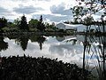Lakeside reflections (6163994559).jpg