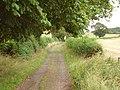 Lane, Sweethope - geograph.org.uk - 218437.jpg
