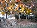 Las antiguas escuelas asoman entre cerezos - panoramio.jpg