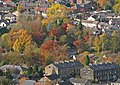 Last colours of autumn, Mytholmroyd (7th November 2010).jpg