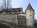 Laufen-Uhwiesen - Schloss 2013-01-31 15-11-22 (P7700) ShiftN.jpg