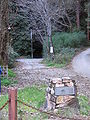 Laurel tunnel portal.jpg