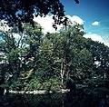 Leśmierz, park przyfabryczny-011.JPG