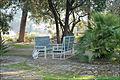 Le jardin de la villa Arson (Nice) (5954763458).jpg
