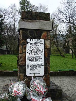Ustrzyki Dolne - Monument to those who died in a fight against the UPA in World War II