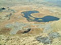 Llyn Dywarchen from above - geograph.org.uk - 398063.jpg