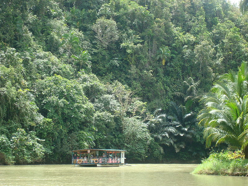 File:Loboc River.jpg