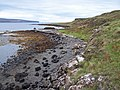 Loch Dunvegan shoreline - geograph.org.uk - 955111.jpg