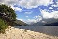 Loch Shiel.jpg