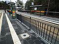 Lodz. Tram line to Olechow (Olechow tram loop).JPG