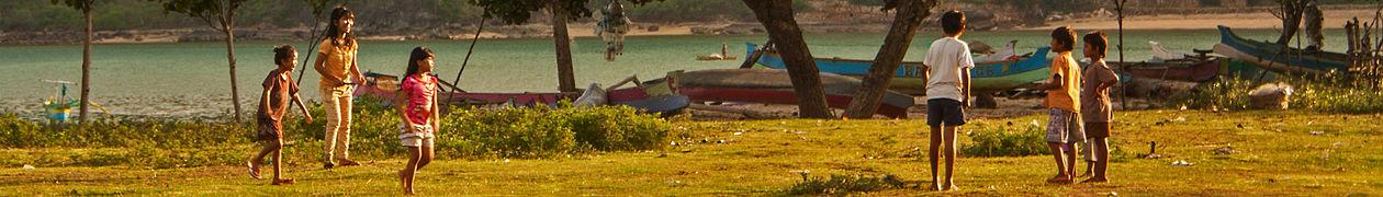 Lombok banner.jpg