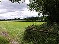 Looking towards East Wood - geograph.org.uk - 480243.jpg