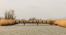 Loopbrug naar vogelkijkhut Zeearend. Locatie, Oostvaardersplassen 08.jpg