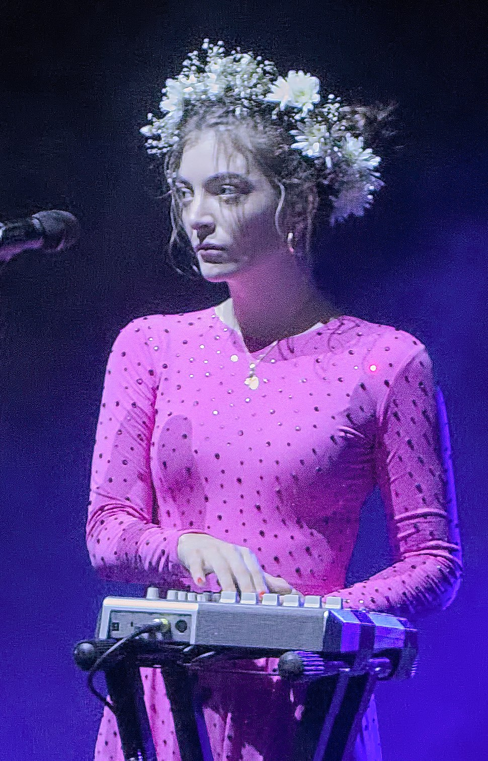 Lorde Brisbane Nov 2017 (cropped)