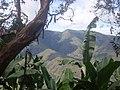 Los guaduales Balboa Cauca - panoramio (12).jpg