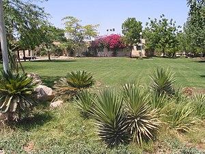 Kibbutz -  Kibbutz Lotan