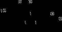 Struktur von Lugdunam