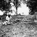 Lupljenje češminove korenine, Vino 1948.jpg