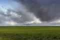 Lush fields under threatening skies in Montezuma County, Colorado LCCN2015632650.tif
