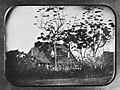 Lyman House, daguerreotype, about 1850, N-F0013, Mission Houses Museum Archives.jpg