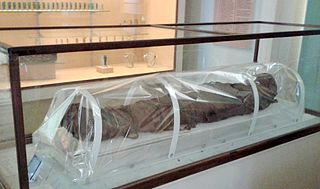 Conservation and restoration of human remains