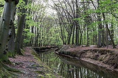 Münster, Wolbeck, Wolbecker Tiergarten, Angel -- 2014 -- 7129.jpg