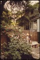 MEG WEHLBERG, EDITOR WITH A NEARBY PUBLISHING HOUSE AND AN ARDENT GARDENER, HAS CREATED THIS FLOWERING OASIS BACK OF... - NARA - 551702.tif
