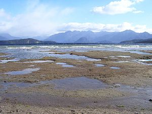 Fiordland - Fraser Beach on the eastern shore of Lake Manapouri