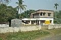 Mahanala Adivasi Primary School - NH-34 - Chakdaha - Nadia 2014-11-28 9927.jpg
