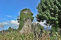 Makriali St. George Georgian Church, Hopa dist., Lazistan - მაკრიალის წმ. გიორგი, ოხვამე.JPG