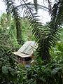 Malaysian Hut - Rainforest Biome @ Eden Project (9757411114).jpg