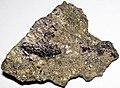 Massive Pt-Pd-rich sulfide (platinum-palladium ore) (Johns-Manville Reef, Stillwater Complex, Neoarchean, 2.71 Ga; Stillwater Mine, Beartooth Mountains, Montana, USA) 1.jpg