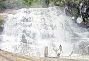 Meghamalai Falls, Theni District