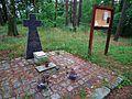 Miejsce pamieci narodowej jezioro rogozinskie (Strzelnica) (3).jpg