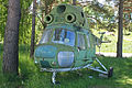 Mil Mi-2 (PZL built) 12 yellow (ES-XAB) (7609857276).jpg