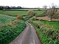Minor road to Kennford - geograph.org.uk - 1059051.jpg
