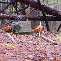 Mississippi John Hurt - grave (cropped).jpg