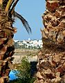 Monastir, Tunisia - panoramio (3).jpg