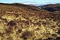 Moorland and Loch Lonachan - geograph.org.uk - 750076.jpg