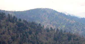 Mount Sequoyah - Mount Sequoyah, viewed from Mount Guyot