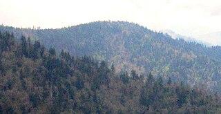Mount Sequoyah mountain in North Carolina, United States of America
