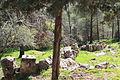 Mount Eitan IMG 2659.JPG